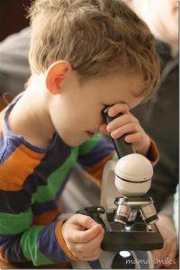 Die Top 5 Besten Mikroskope