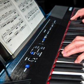 Die Besten Digital Pianos - Alesis Recital Digital Piano