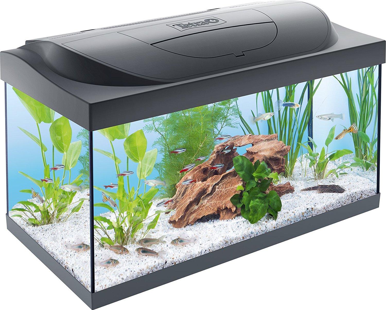 unsere bewertungen und meinungen zu den 5 besten aquarien. Black Bedroom Furniture Sets. Home Design Ideas