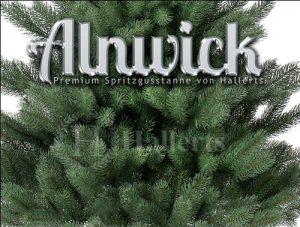 Beste Leistung - Hallerts Alnwick Nordmanntanne
